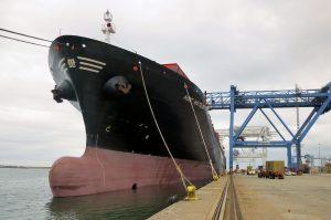 MSC_Ship_2